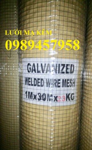 Lưới thép dây 1ly ô 10x10, 20x20, Lưới hàn bọc nhựa, Lưới hàn mạ kẽm13