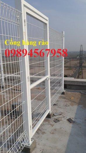 Lưới thép hàng rào mạ kẽm phi 5 50x200, Hàng rào phi 6 ô 50x20013