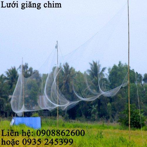 Lưới tàng hình đã làm sẵn giăng bẫy chim1