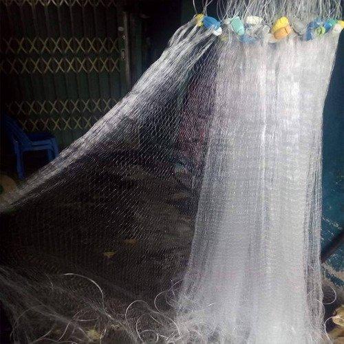Lưới Giăng Cá Lòng Tong Mùa Dịch2