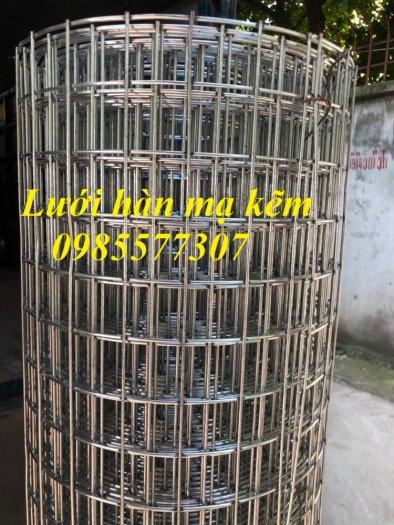 Lưới thép hàn mạ kẽm D3 a50 x 50, D4 a50x50, lưới làm giàn lan,cây cảnh2