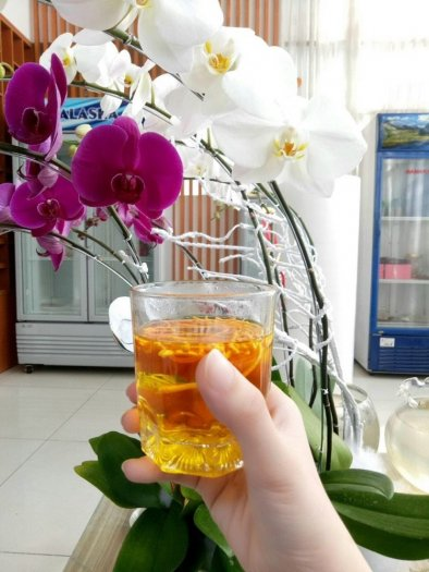 Bán Lẻ Và Sỉ NẤM TRÙNG THẢO Tại Tp. Hồ Chí Minh, bao ship nội thành.13
