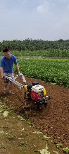 Máy xới đất chạy xăng đa năng Yikito HD230 giá rẻ0