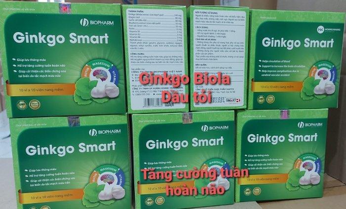 Ginkgo Smart Hỗ trợ tăng cường tuần hoàn não, giúp máu lưu thông.0