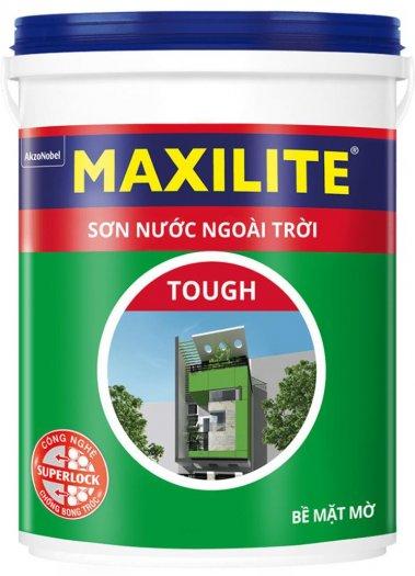 Đại lí cấp 1 Sơn ngoại thất Maxilite tại TPHCM0