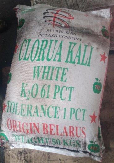 Clorua kali (KCl) – Belarus0