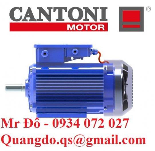 Nhà cung cấp động cơ xoay chiều ba pha Elektropol Cantoni4