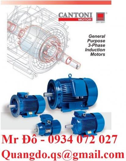 Nhà cung cấp động cơ xoay chiều ba pha Elektropol Cantoni3