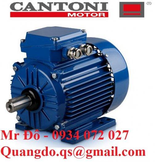Nhà cung cấp động cơ xoay chiều ba pha Elektropol Cantoni2