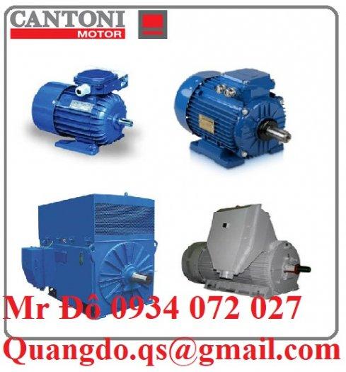 Nhà cung cấp động cơ xoay chiều ba pha Elektropol Cantoni1