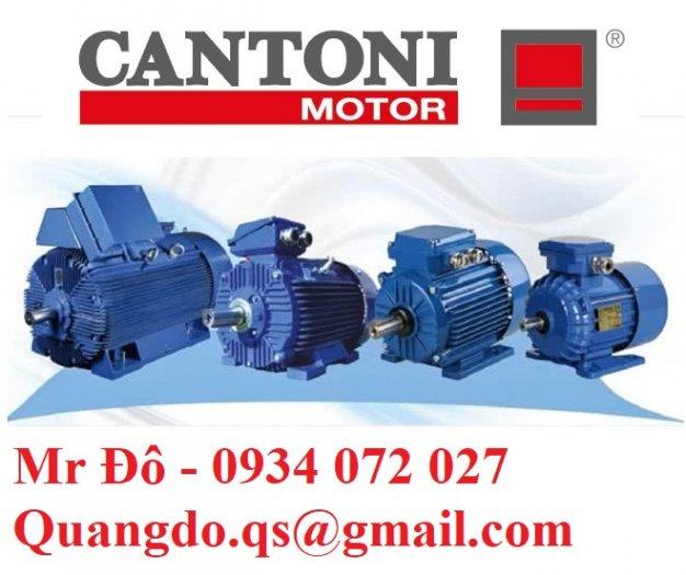 Nhà cung cấp động cơ xoay chiều ba pha Elektropol Cantoni0