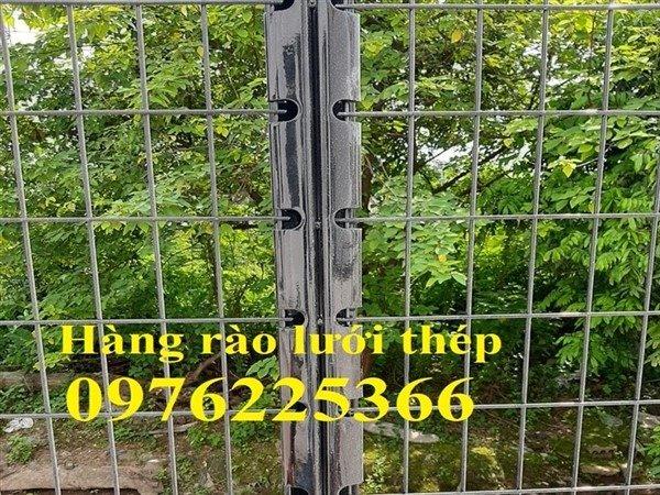 Hàng rào lưới thép, hàng rào gập đầu, hàng rào chấn sóng10
