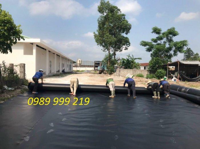 Bạt hdpe 2mm cuộn 200m2 khổ 4x50m chống thấm hầm biogas1