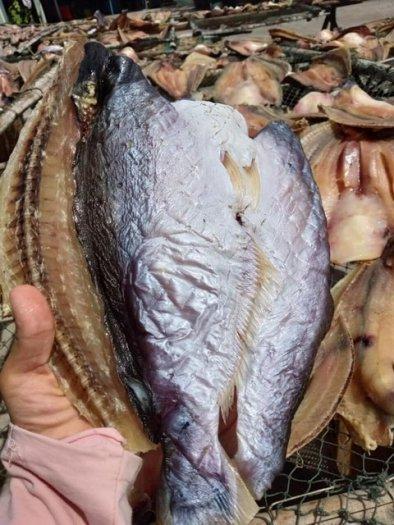 Khô cá dứa Trà Vinh2
