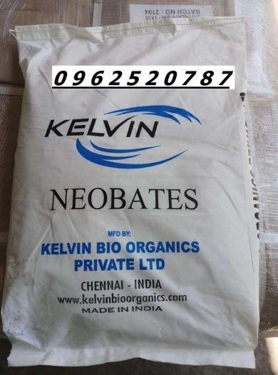 Enzyme cắt tảo, xủ lý nước Neobates dùng trông nuôi trồng thủy sản1