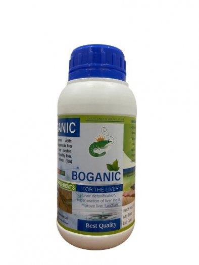 Cao thảo dược bố gan Boganic2