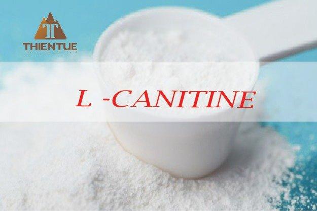 L- carnitine Fumarate0