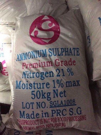 Chuyên cung cấp SA tinh thể, SA bột, SA hạt giá tốt2