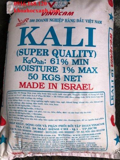 KCL: Khoáng Kali bổ sung ao nuôi tôm0