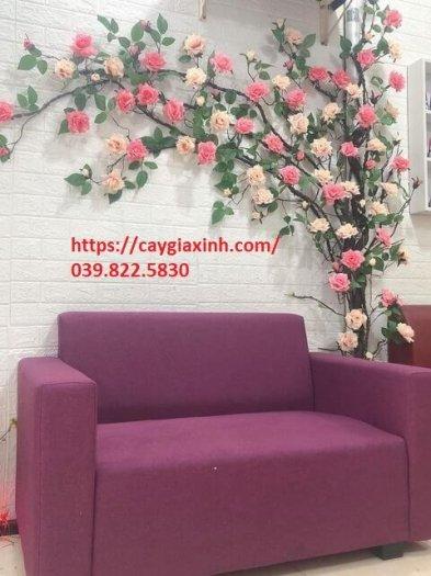 Dây hoa hồng leo  nhựa2