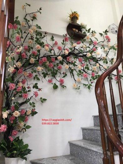 Dây hoa hồng leo  nhựa1