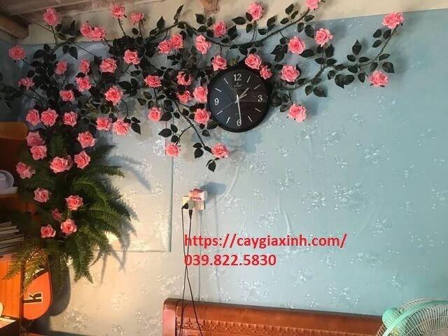 Dây hoa hồng leo  nhựa0