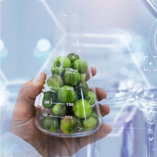 Thực phẩm bảo vệ sức khỏe Nutrilite Bio C Plus 1042701