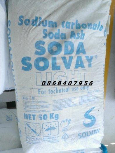 Sodium Carbonate (Soda nóng) Bungari ổn định môi trường2