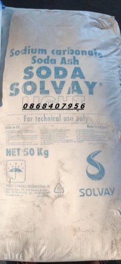Sodium Carbonate (Soda nóng) Bungari ổn định môi trường0