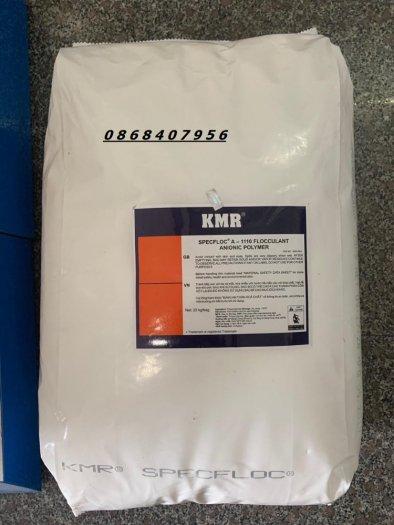 Siêu lắng tụ Polymer Anion kmn2