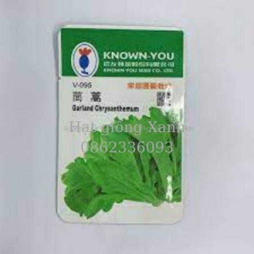 Hạt giống cải cúc nếp Đài Loan Know You0