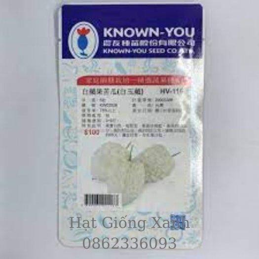 Hạt giống mướp đắng trái tim trắng Đài Loan Know You F10
