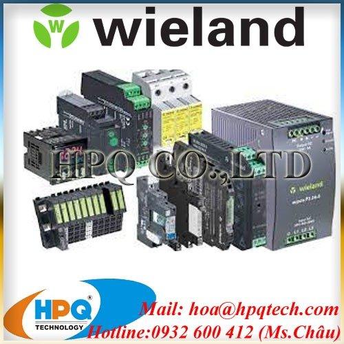 Rơ le an toàn Wieland chính hãng Viet Nam3