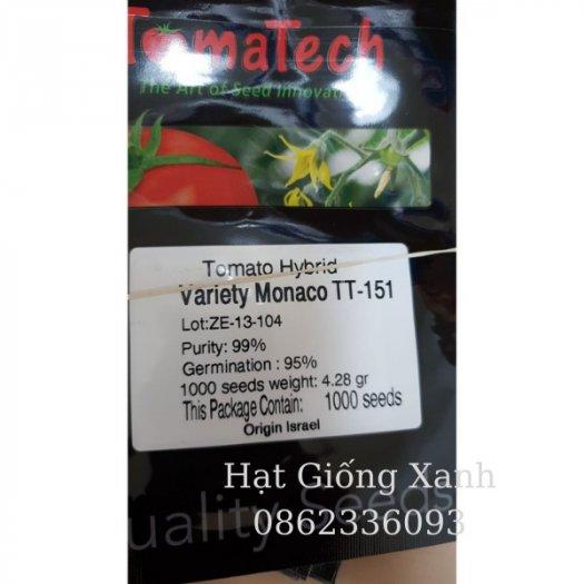 Hạt giống cà chua beef chịu nhiệt Monaco - tỷ lệ nảy mầm 95%0