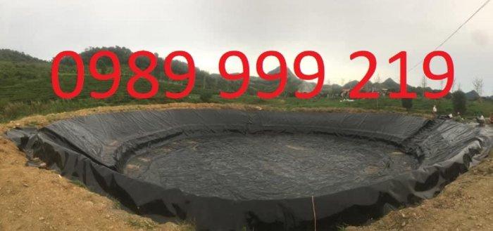 Màng hdpe 0.3mm khỏ 5x20m cuộn 100m2 lót biogas4