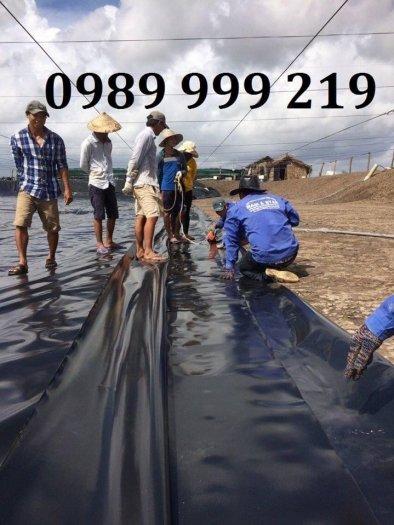 Tấm bạt hdpe đen 0.3mm khổ 6x20m cuộn 120m2 lót bể cá koi3