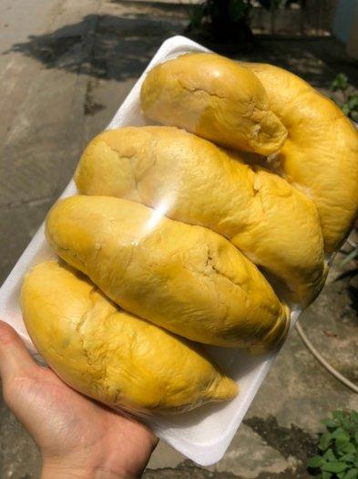 Sầu riêng thái cơm vàng hạt lép tây Nguyên7