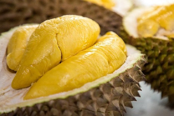 Sầu riêng thái cơm vàng hạt lép tây Nguyên1