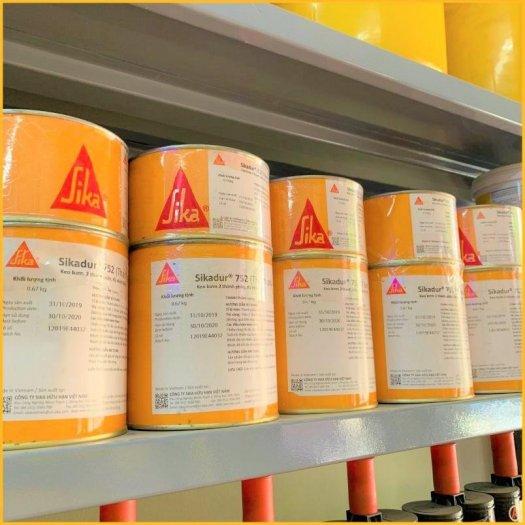 Nhựa Bơm Epox- Sikadur 752 (Bộ 1kg)0