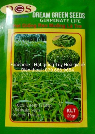 Hạt giống rau củ quả các loại43