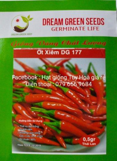 Hạt giống rau củ quả các loại29