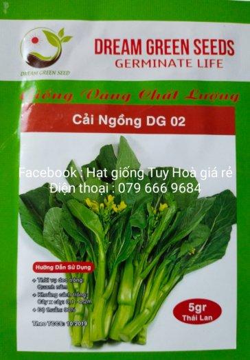Hạt giống rau củ quả các loại28