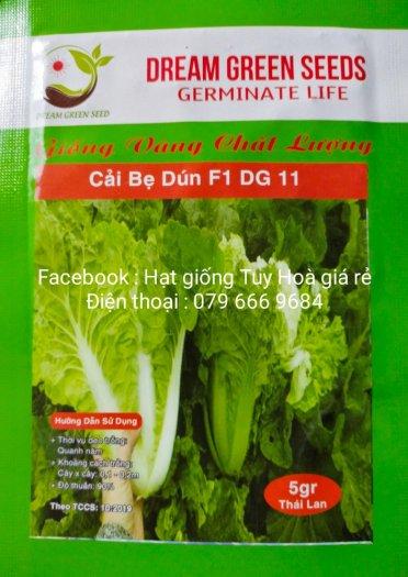Hạt giống rau củ quả các loại19