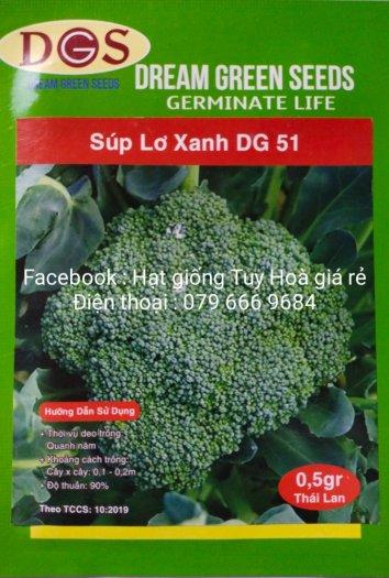 Hạt giống rau củ quả các loại14
