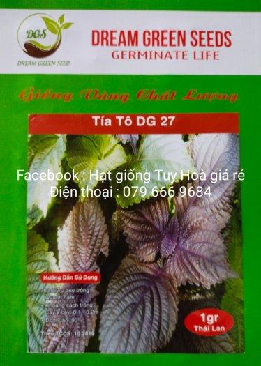 Hạt giống rau củ quả các loại13