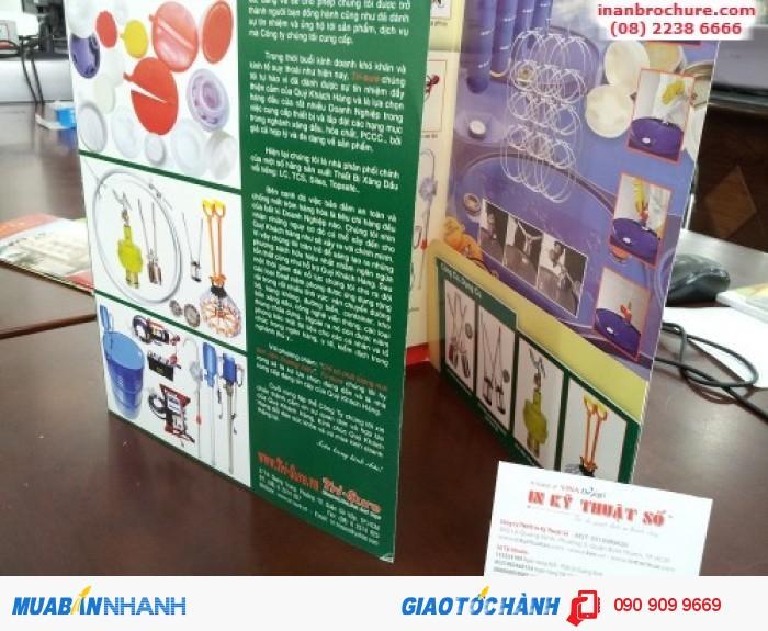 In brochure tùy chọn số lượng màu cùng gia công thành phẩm theo đặt riêng của khách hàng