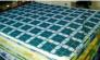 Kymđan bán hàng 1.40m, 1.60m, 1.80m giao miễn phí