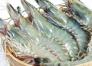 Hải sản các loại (cá, tôm, cua,.. .) tươi ngon!!!