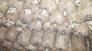 Nấm Bào ngư xám nhật, sò trắng, sò xám, mèo (mộc nhĩ): 10k/bịch