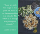 Bánh Hoa Mai Nhân Khóm Tắc Cậu - Đặc sản kiên giang